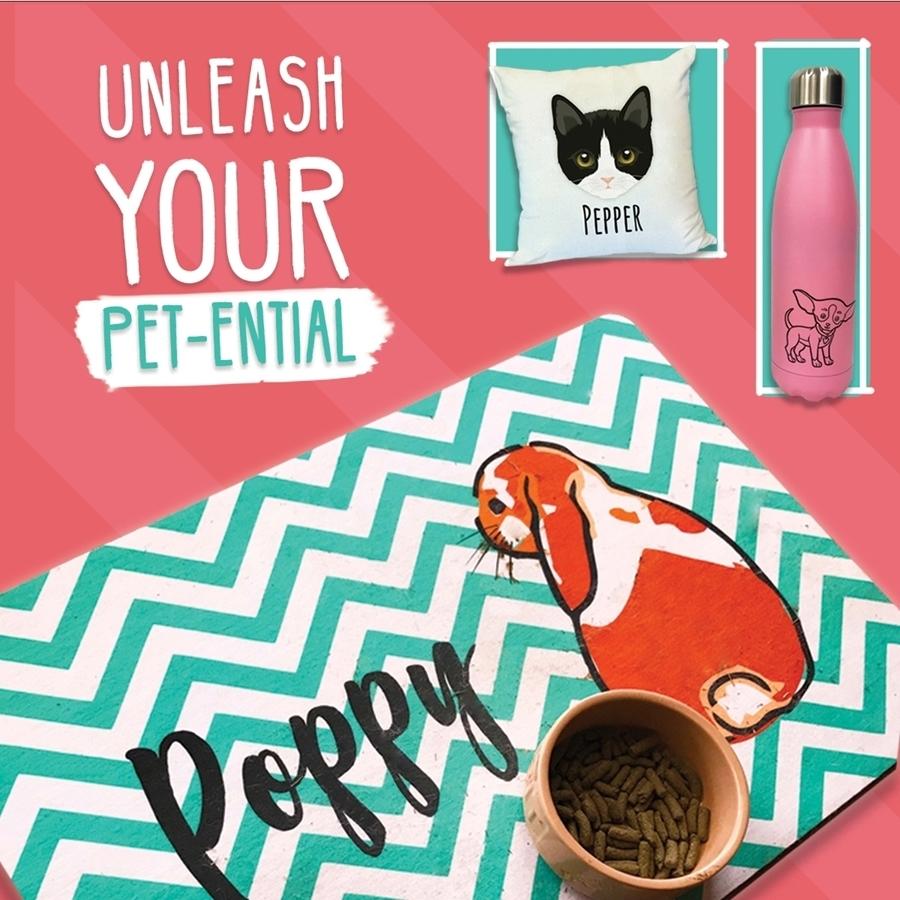 Unleash Your Pet-ential for Cat & Dog Days! 🐶🐱